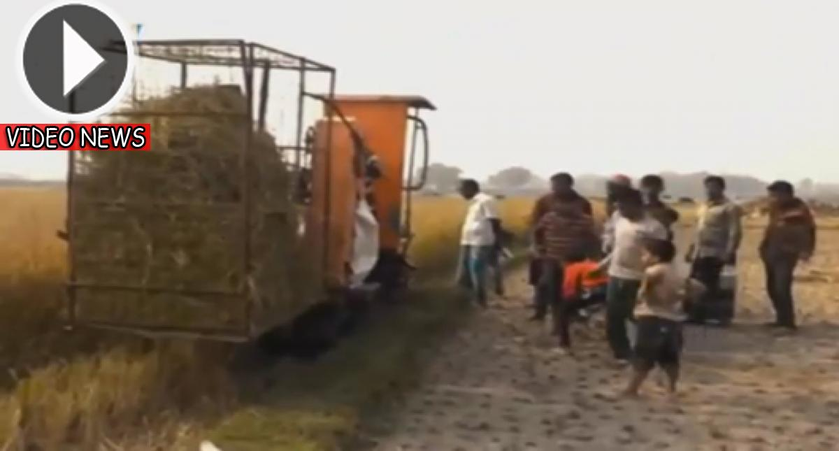 This Young Guy Makes A Machine In Netrokona That Is Capable Of Husking Paddy, Flailing Paddy And Packing At A Time. Watch!!