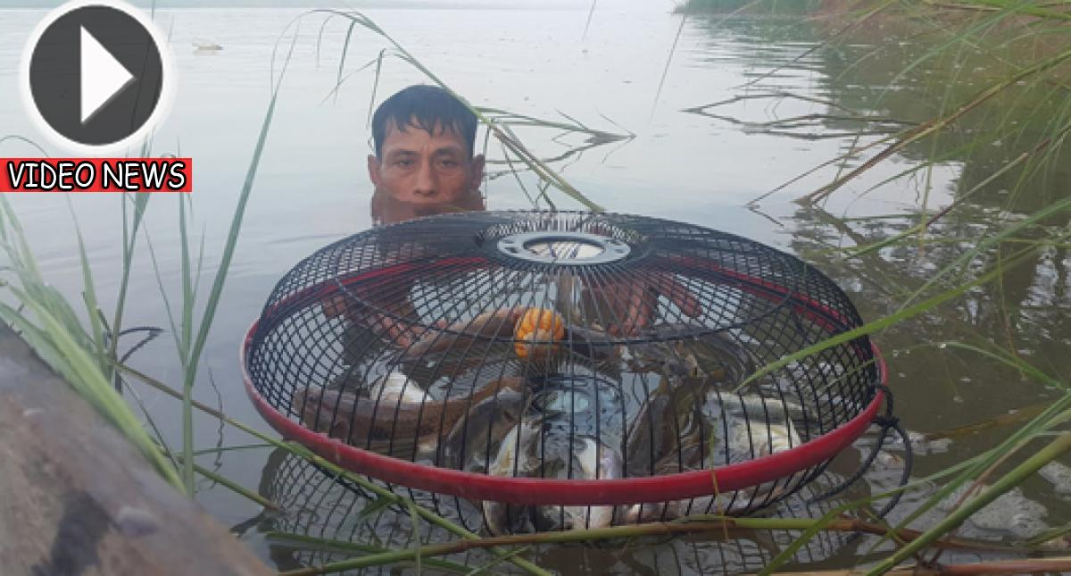 This Guy Traps Abundant Of Fishes through Using This Amazing Electric Fan Guard. It's Utterly Incredible. Watch!!