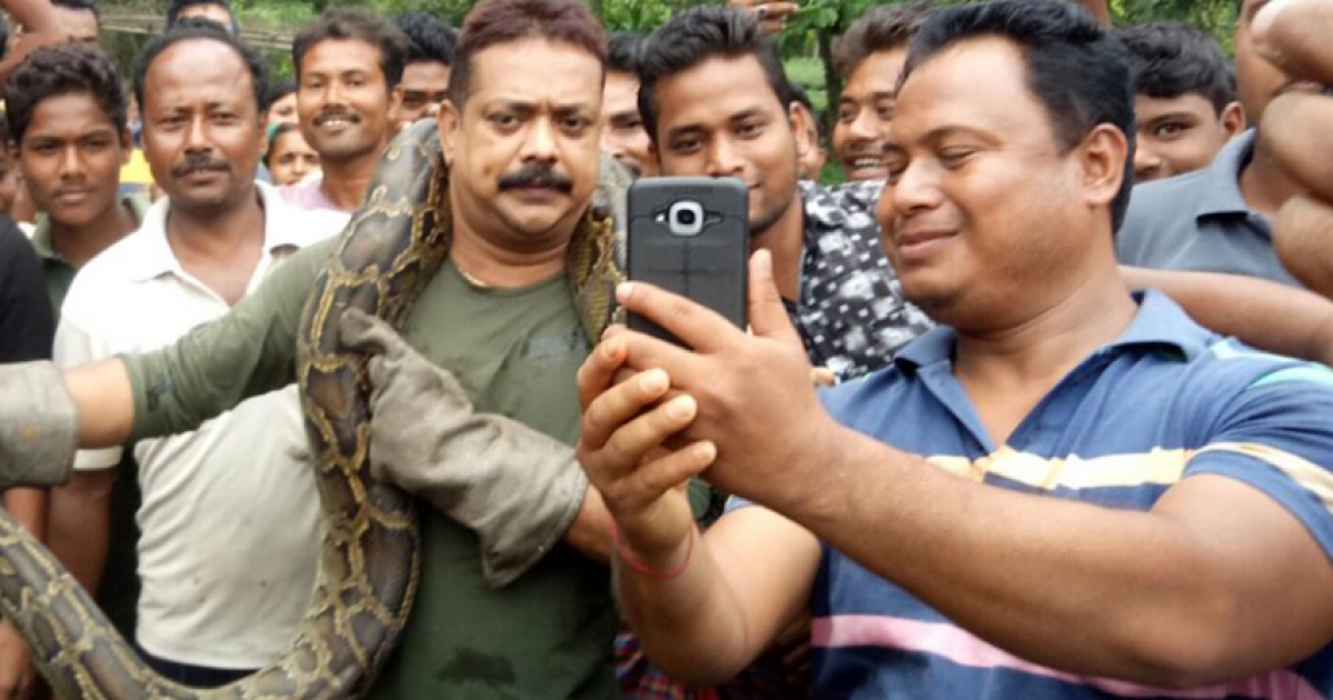 Indian Forest Ranger Poses For A Selfie With A Python But It Tries To Strangle Him.