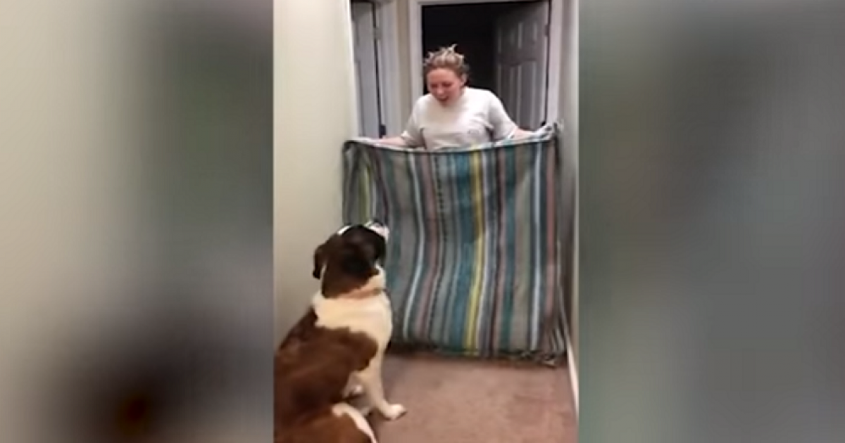 Woman Attempts 'What The Fluff Challenge',But It Goes Horribly Wrong.